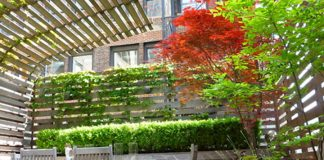 không gian đồng xanh cho xum họp thêm ngọt ngào và thi vị cho cả gia đình